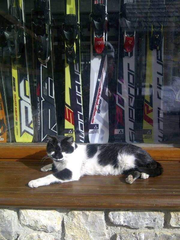 Ski Cat - Bosnia Crazy Snow Camp 2013 03